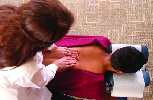 5 Chiropractic Options That Make Incredible Careers;