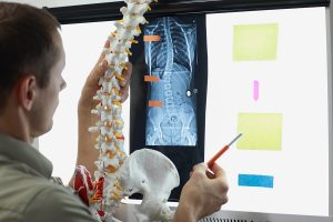 Chiropractor examining vertabrae;
