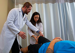 Licensed doctors training chiropractic student;