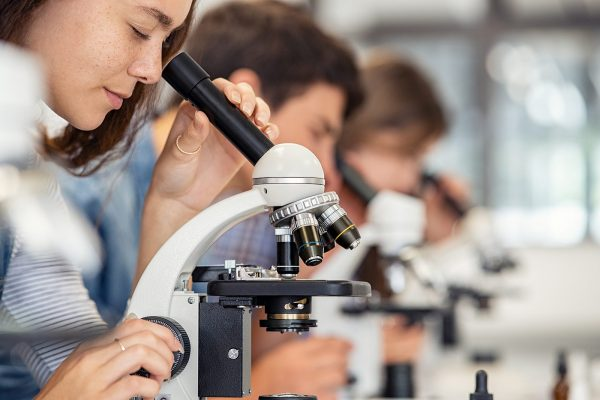 Student examining slide with microscope;